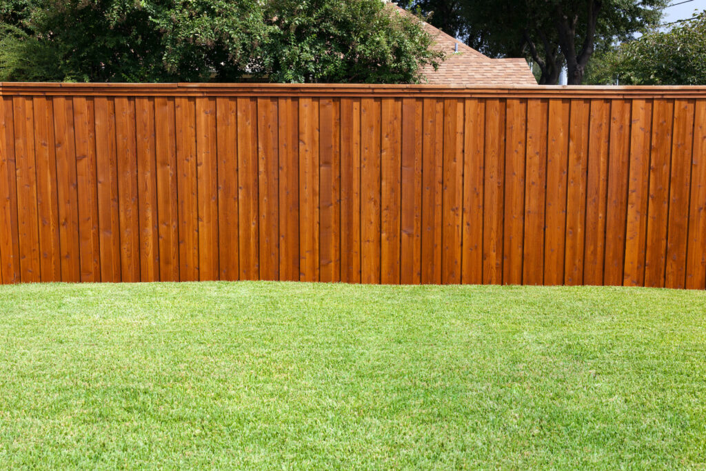 Fence with Grass